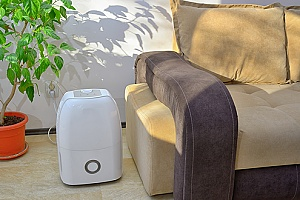 a dehumidifier in a home