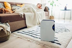Dehumidifier in living room